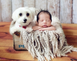 newborn-photography-11