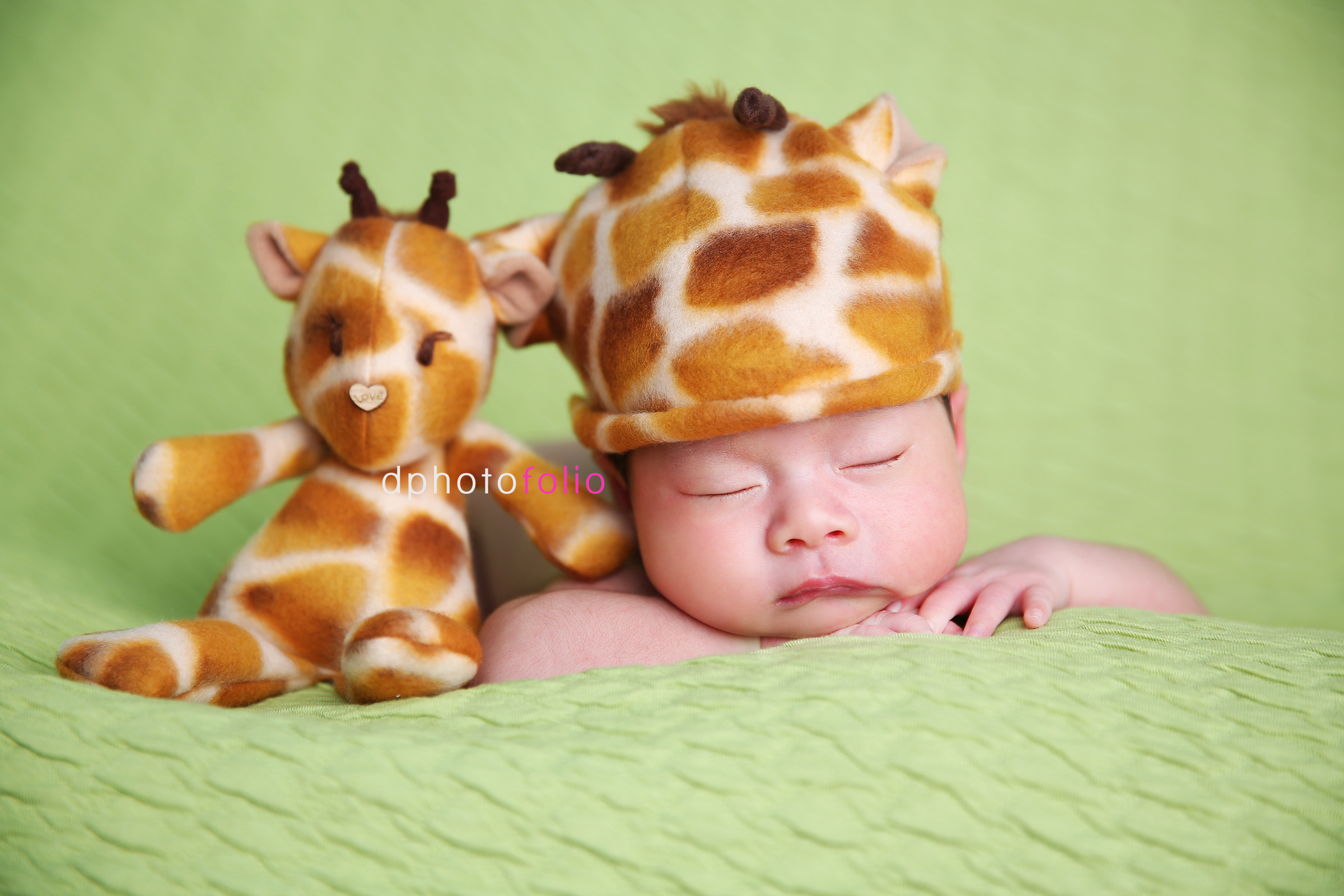 safari newborn